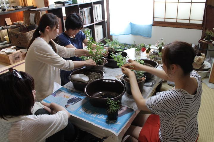 夏の寄せ植え教室レポート
